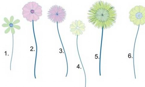 Mod Flower Collection – Free Embroidery Designs