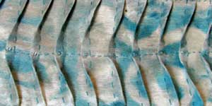 Free Tutorial: Fabric Manipulation Techniques